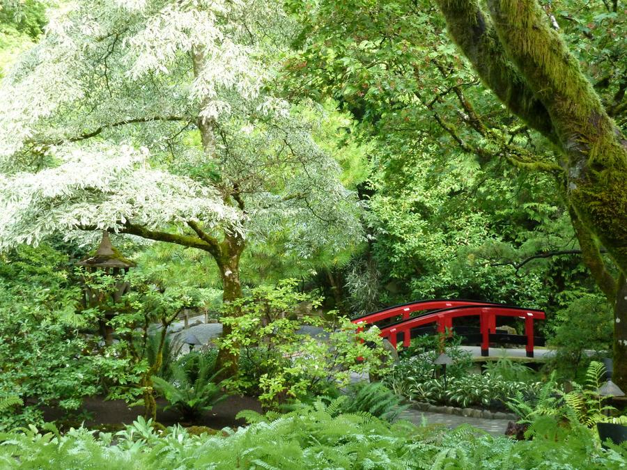 Japanese Garden 5 by raindroppe