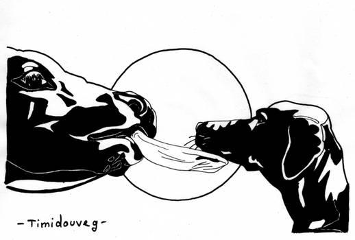 CarrotInvaders - 03 - Tendresse animale
