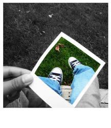Deck Polaroid by in-transit