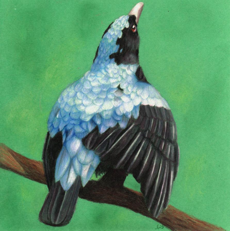 Fairy Blue Bird by Wilaine