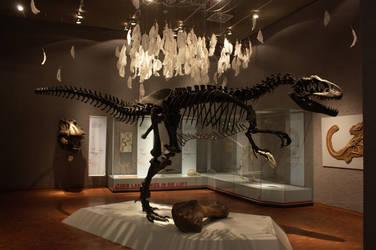 Allosaurus by bookscorpion