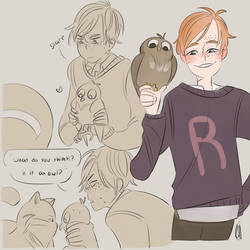 ron and little owl