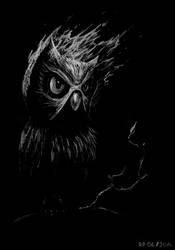 burning owl by balinking