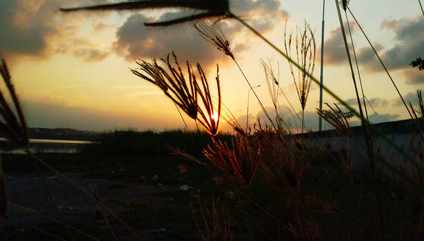 Kilauan Sore dari sudut Kota Lhokseumawe