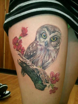 Baby Owl Tattoo