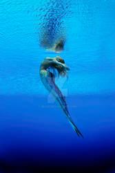 Hearts Atlantis H2O Crucifx