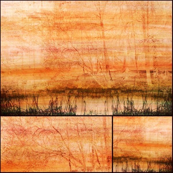 the Pond by dajono