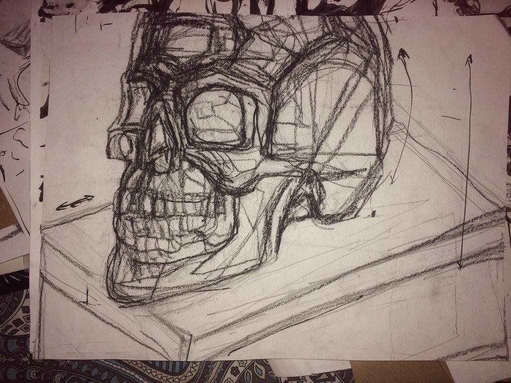 skull study 2017 by CharaSweetCheeks