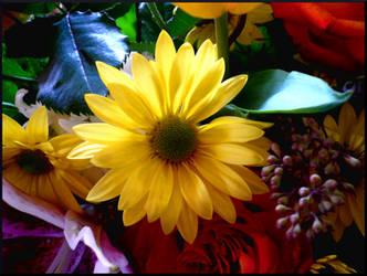 Grandmas Blooms by mygreymatter