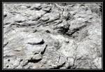 Washed Rock