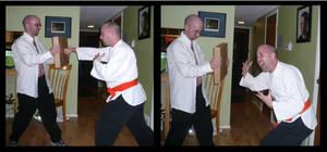 Martial Artist Fail 4 by mygreymatter