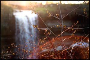 Waterfall Webs by mygreymatter