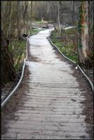 Life Path by mygreymatter