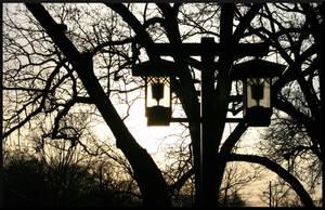 Park Lights by mygreymatter