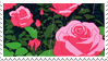 - Stamp: Drawn roses. - by ChicaTH