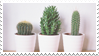 - Stamp: Cacti. - by ChicaTH