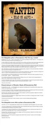 Punxsutawney Phil Wanted for Fraud