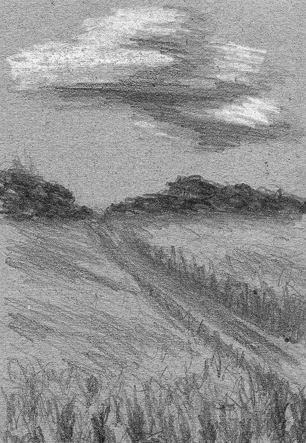 Field... sketch by Sova-mouse