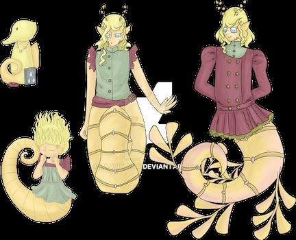 Evolution of a seahorse