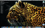 Desktop 16.1.2011