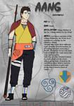 Ninja Gaang: Aang