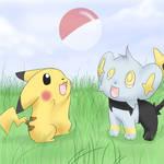 Pikachu and Shinx