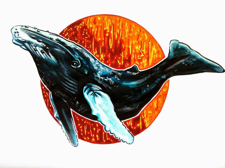baleine by FDupain