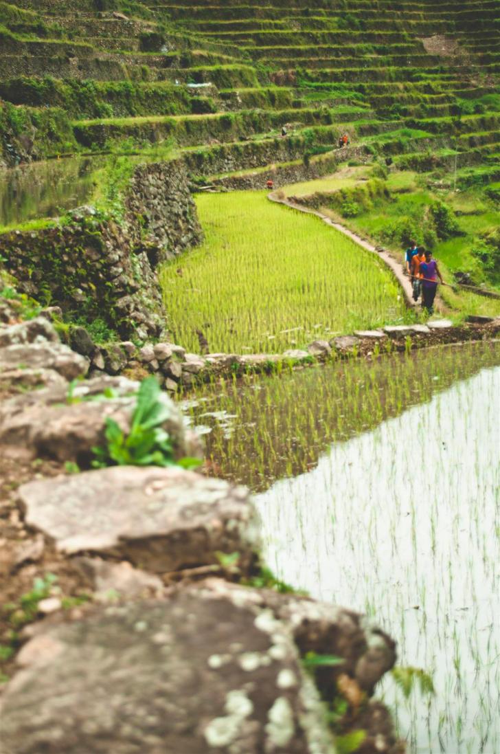 Trail by HoneyMaglalang
