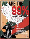 Occupy Everwhere