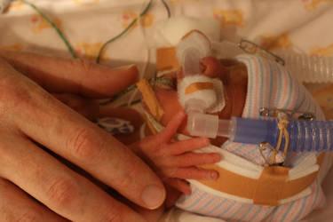 mummy's hand by davidprentice