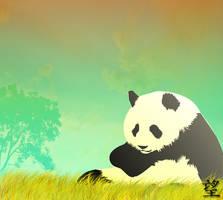 Panda by flaviuss