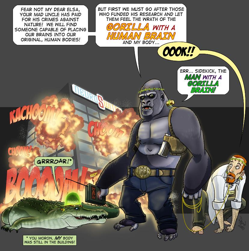 Gorilla Human Brain - DBed
