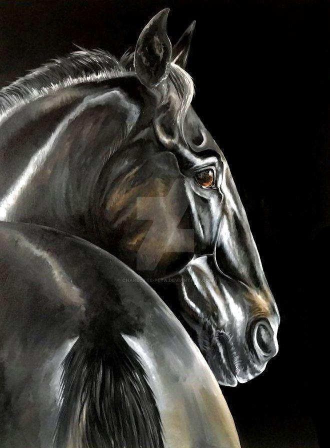 Dark Horse by Charlotte-Peta
