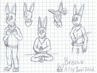 Brezua the Samurai Hare by DanieluYoshikoto