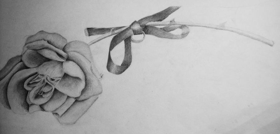Rose and Ribbon - Penc...