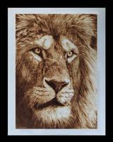 leone by ddntati