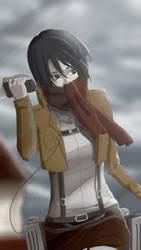 Mikasa by DinaAbd
