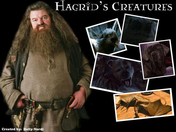 how tall is hagrids actor