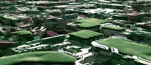 The green roofs of a space city