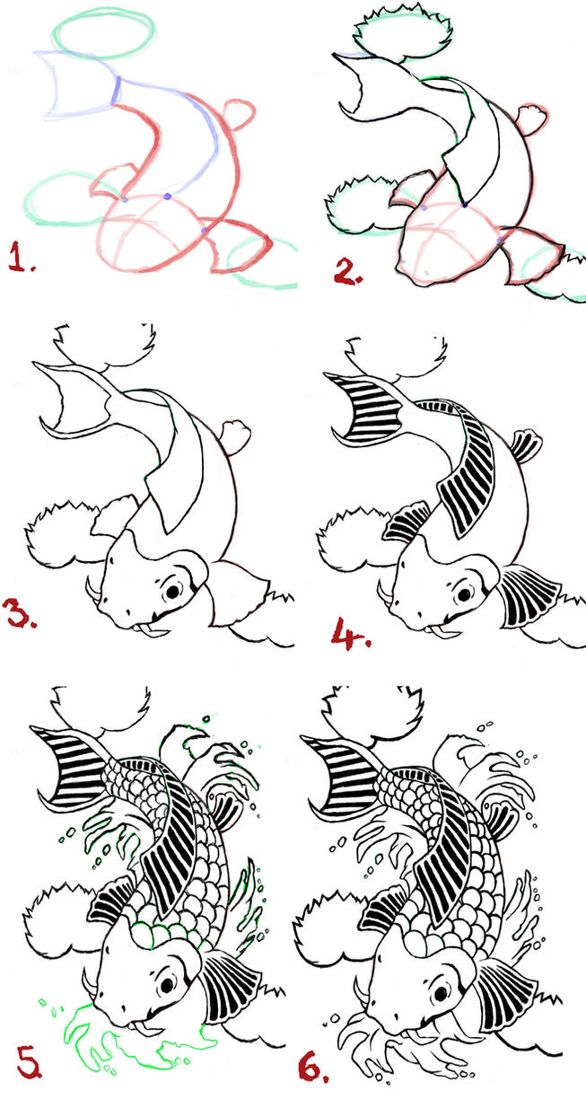 Koi Fish Drawing Steps By Wenwecollide On Deviantart