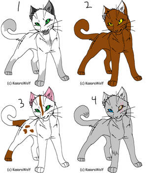 Free Adopts For Group