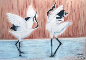 Courting Cranes 02 Apr 16
