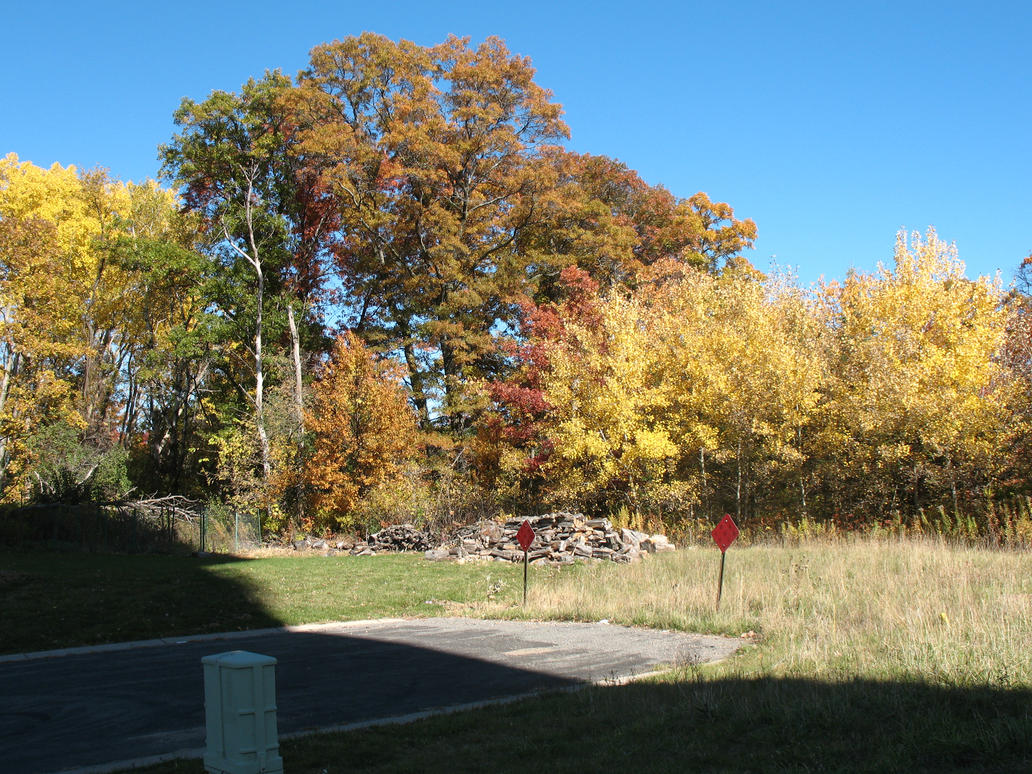 Autumn 2014 in Minnesota - 12 by CatComixzStudios
