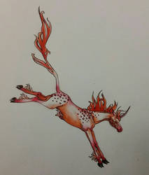 Junicorn 2019 Day 5 - From The Fire