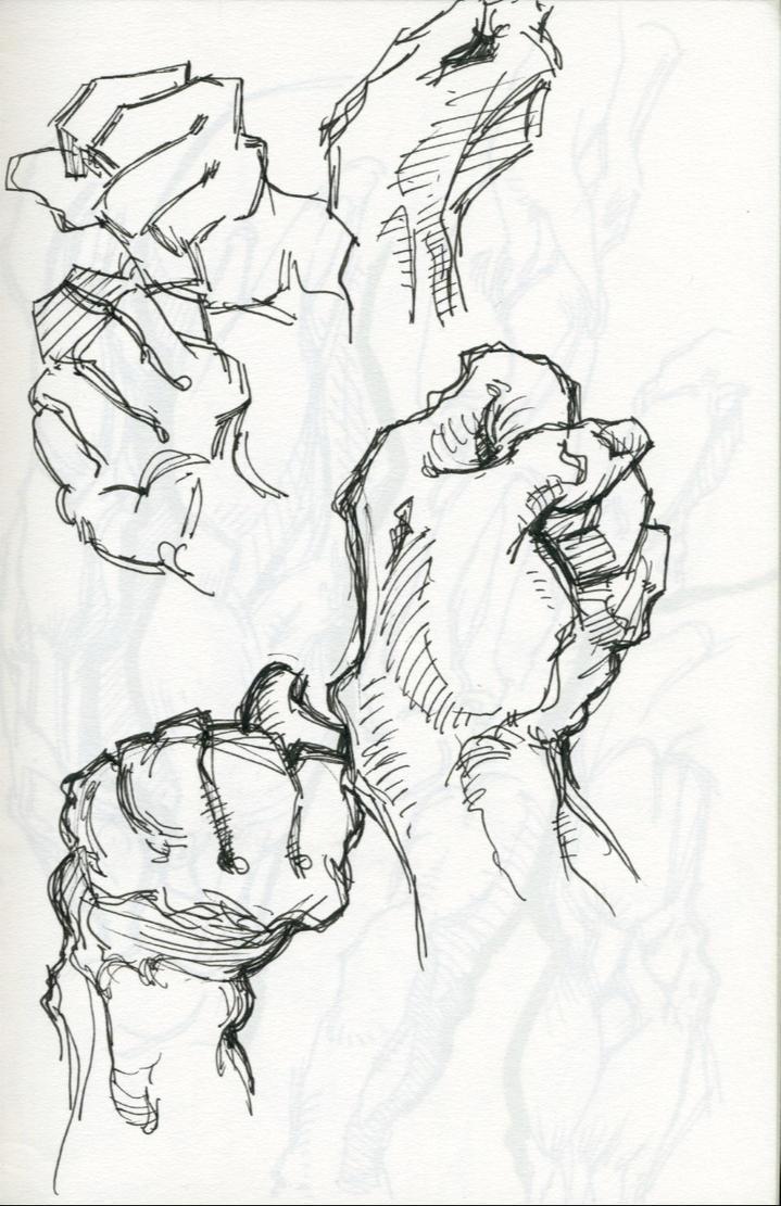 Bridgman Anatomy Study - Hands by OKThirteen on DeviantArt