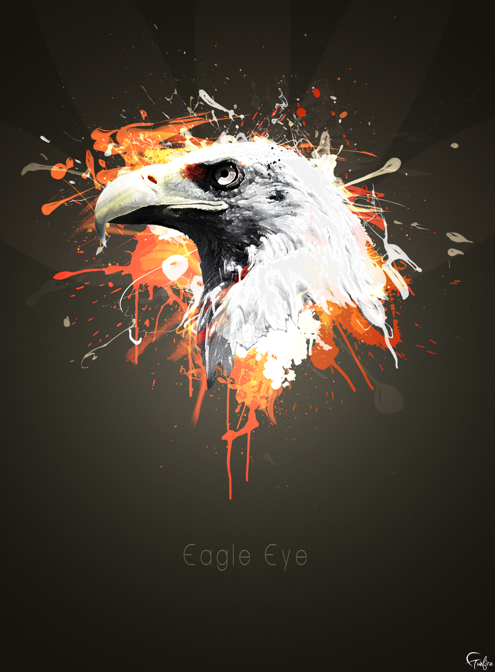 Eagle Eye by gunfiregf