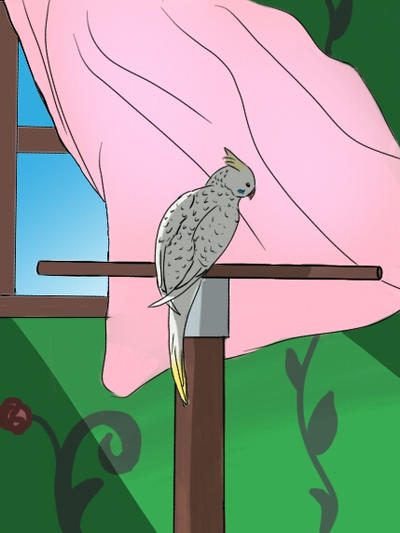 Window bird by NineTails-Kyuubi