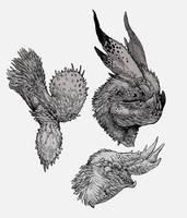 Gryphon-Busts by Stephen-0akley