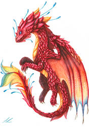~The Dragon Of Courage + detailed Video