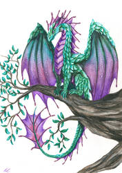 ~The Dragon Of Calm + detailed Video
